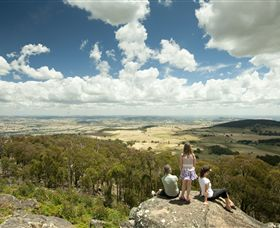Mt Wombat lookout - Palm Beach Accommodation