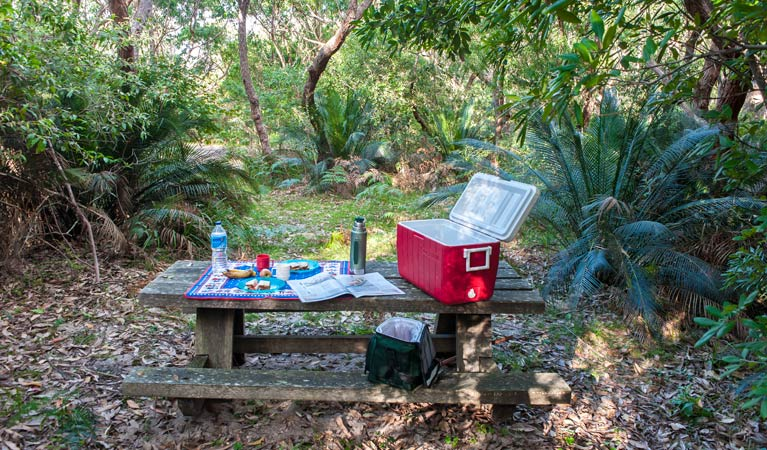 Little Llangothlin picnic area - Palm Beach Accommodation
