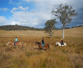 Chapman Valley Horse Riding - Palm Beach Accommodation