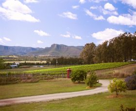 Catherine Vale Wines - Palm Beach Accommodation