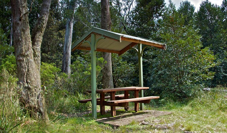 Devils Hole lookout walk and picnic area - Palm Beach Accommodation