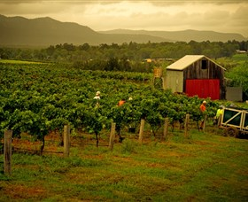 Around Hermitage Wine and Food Trail Hunter Valley - Palm Beach Accommodation