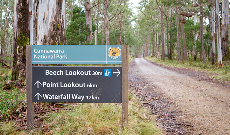 Beech lookout - Palm Beach Accommodation