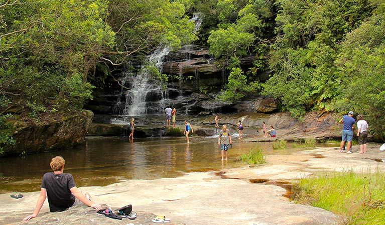 Somersby Falls picnic area - Palm Beach Accommodation