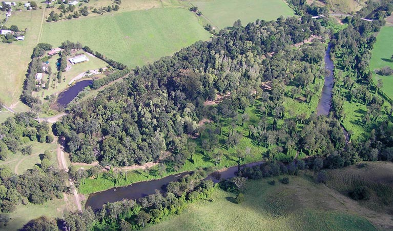 Moore Park Nature Reserve - Palm Beach Accommodation