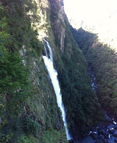 Ellenborough Falls - Palm Beach Accommodation