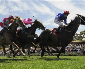 Moruya Racecourse - Palm Beach Accommodation