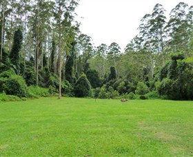 Kerewong State Forest - Palm Beach Accommodation