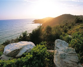 Goanna Headland - Palm Beach Accommodation