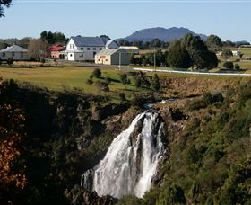 Waratah Falls - Palm Beach Accommodation