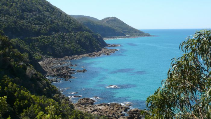 Australian Natural Treasures Touring - Palm Beach Accommodation