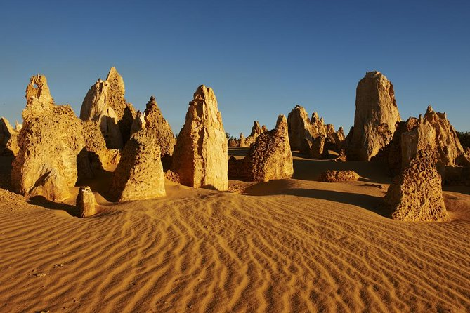 Pinnacles Day Trip from Perth Including Yanchep National Park - Palm Beach Accommodation