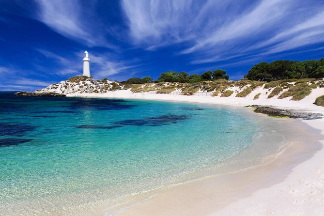 Rottnest Island Grand Tour Including Lunch and Historical Train Ride - Palm Beach Accommodation