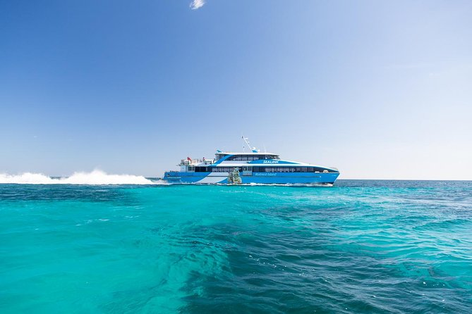 Fremantle to Rottnest Island Roundtrip Ferry Ticket - Palm Beach Accommodation