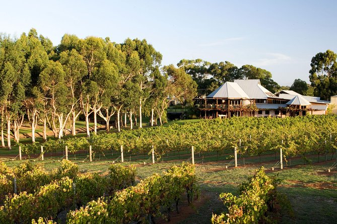 Margaret River and Geographe Bay Region Day Trip from Perth - Palm Beach Accommodation
