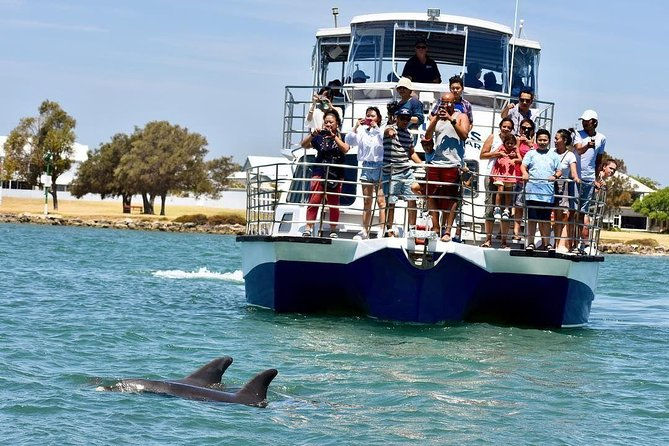 Mandurah Dolphin and Scenic Canal Cruise - Palm Beach Accommodation