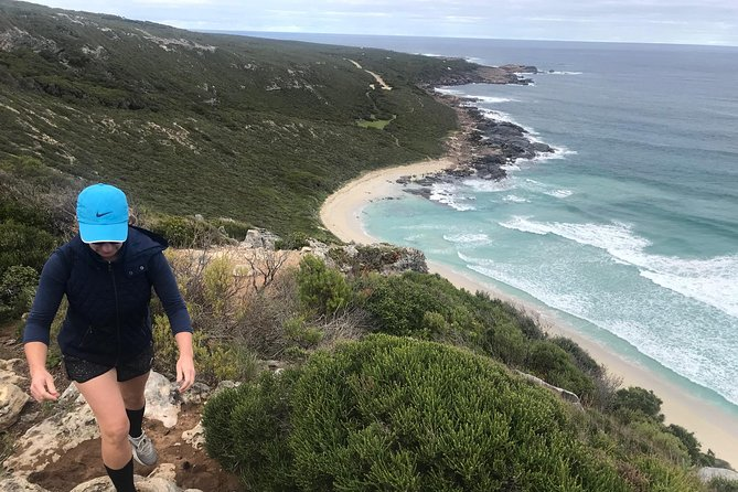 Cape to Cape Track Hike and Winery Tour