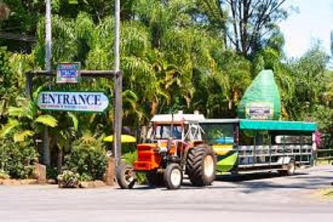 Tropical Fruit World with Wildlife Boat Cruise Mini Train Ride from Gold Coast - Palm Beach Accommodation