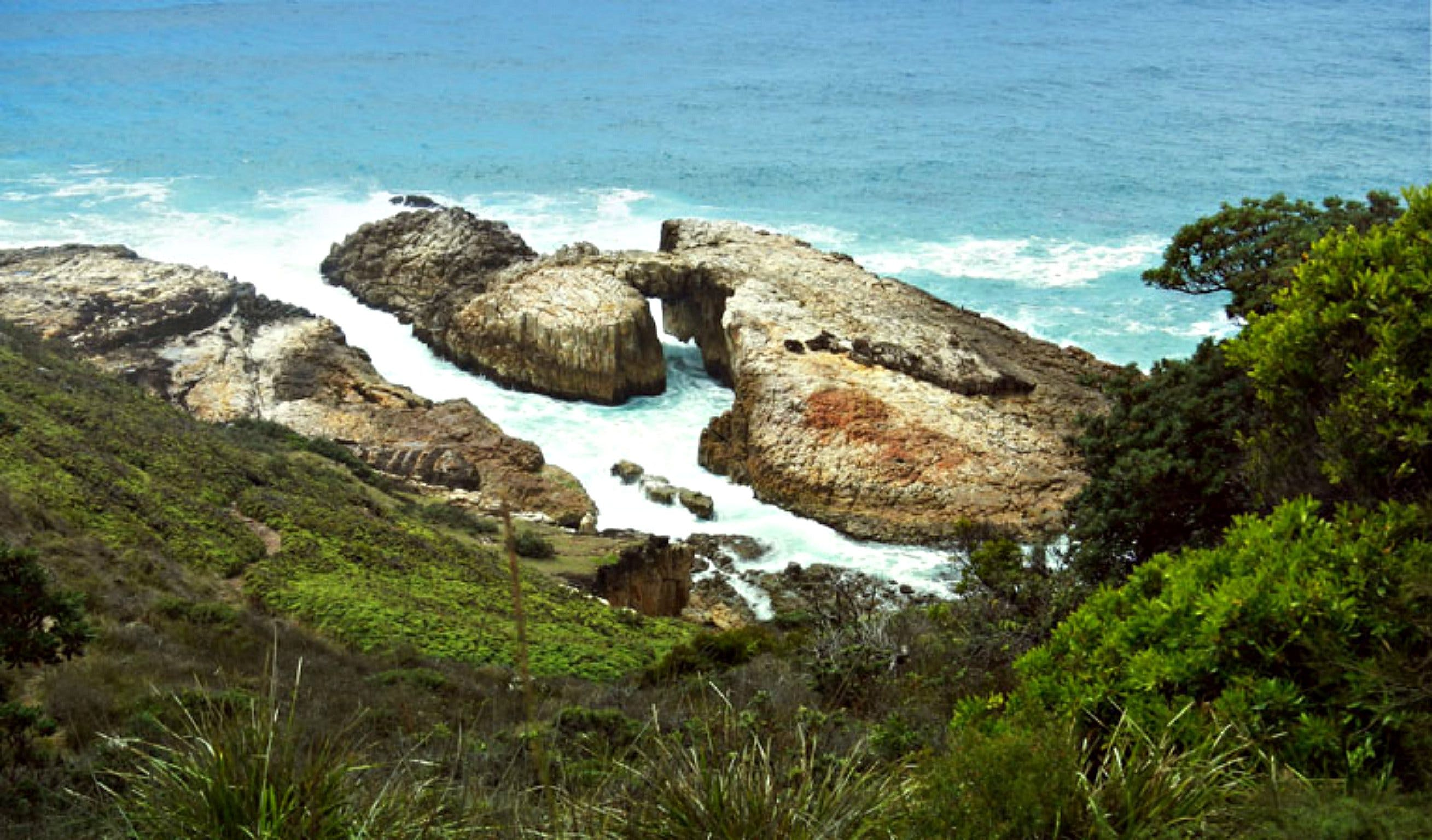 Diamond Head Loop Walk - Palm Beach Accommodation