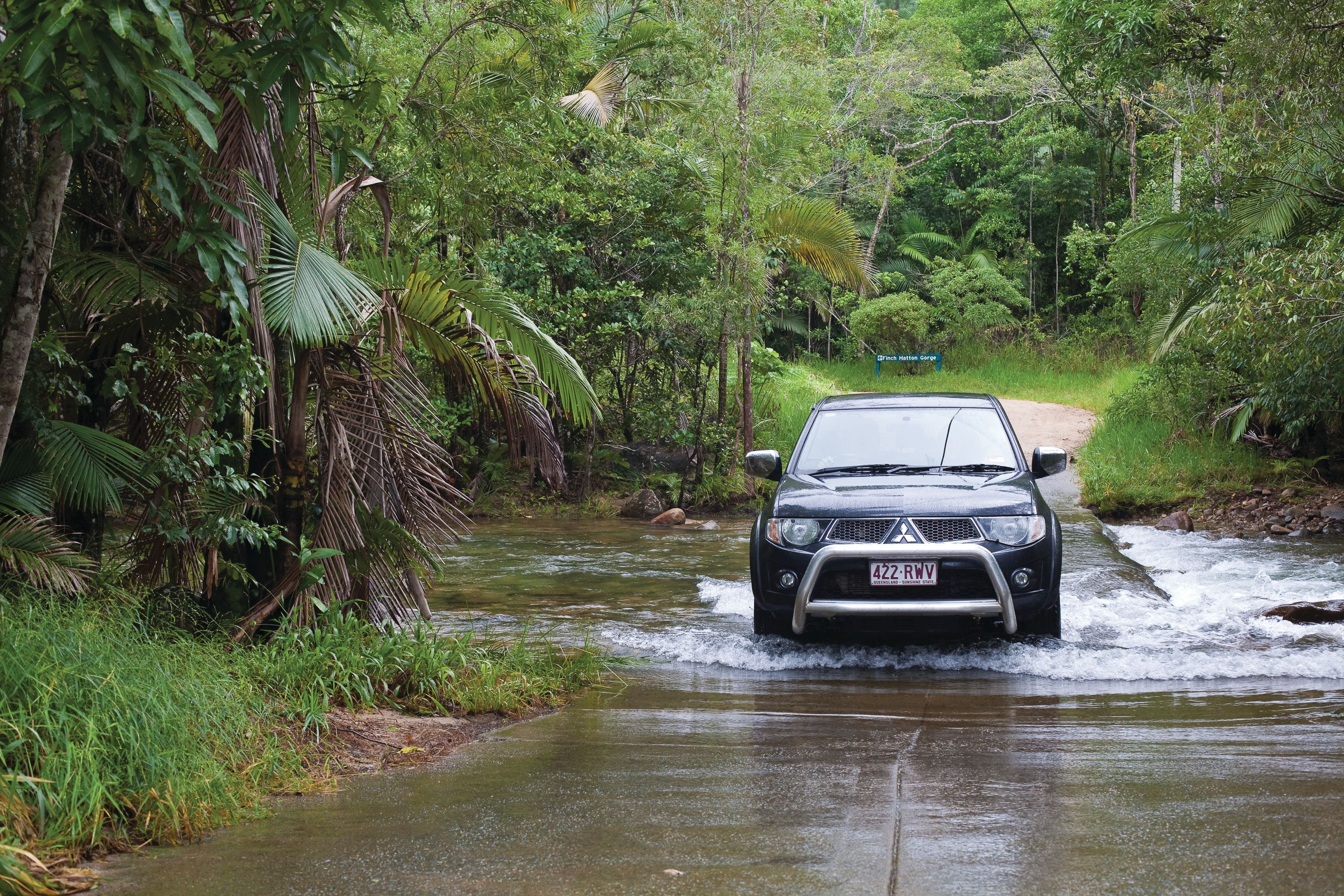 The Pioneer Valley and Eungella National Park - Palm Beach Accommodation