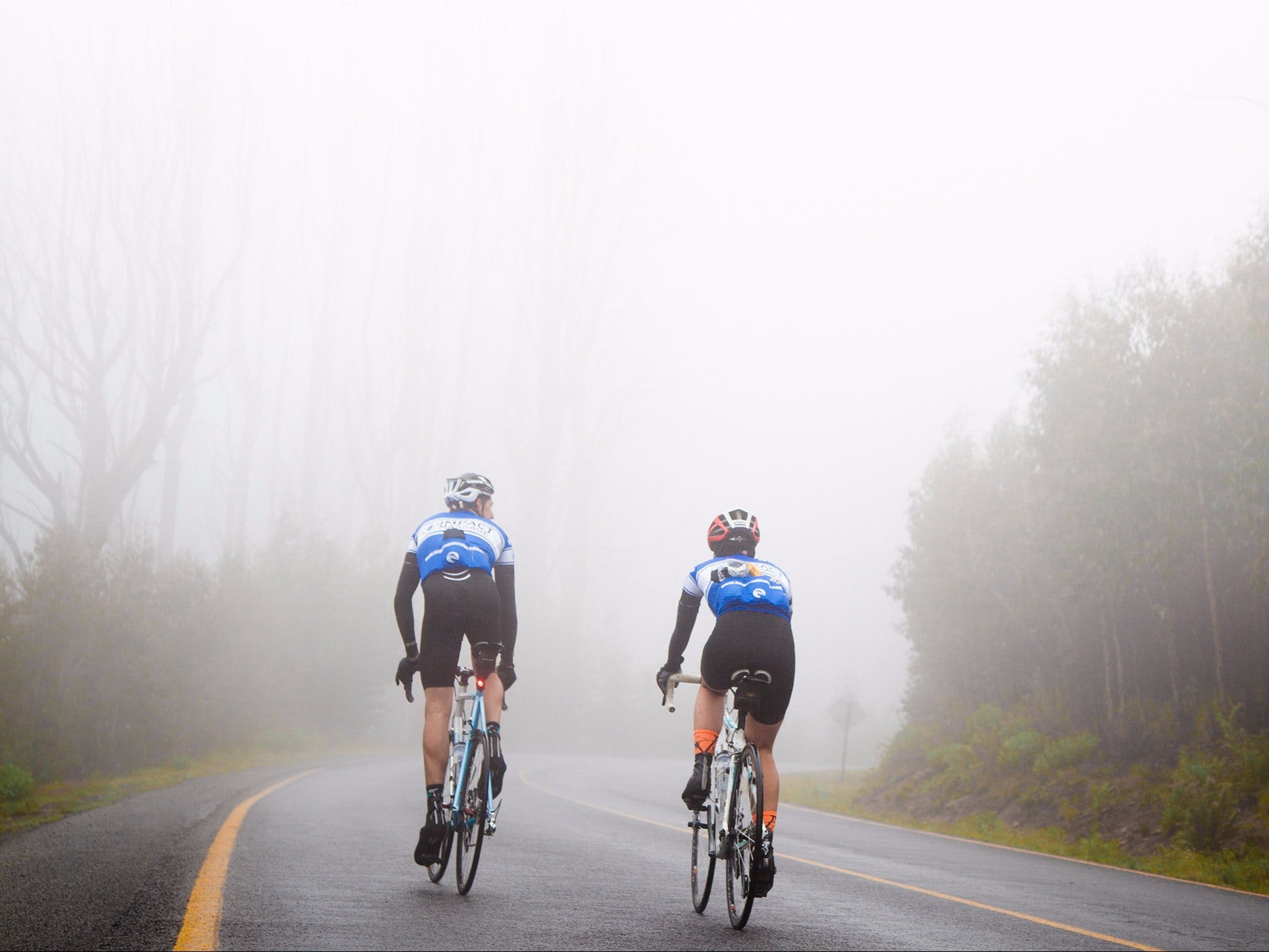 7 Peaks Ride - Lake Mountain - Palm Beach Accommodation