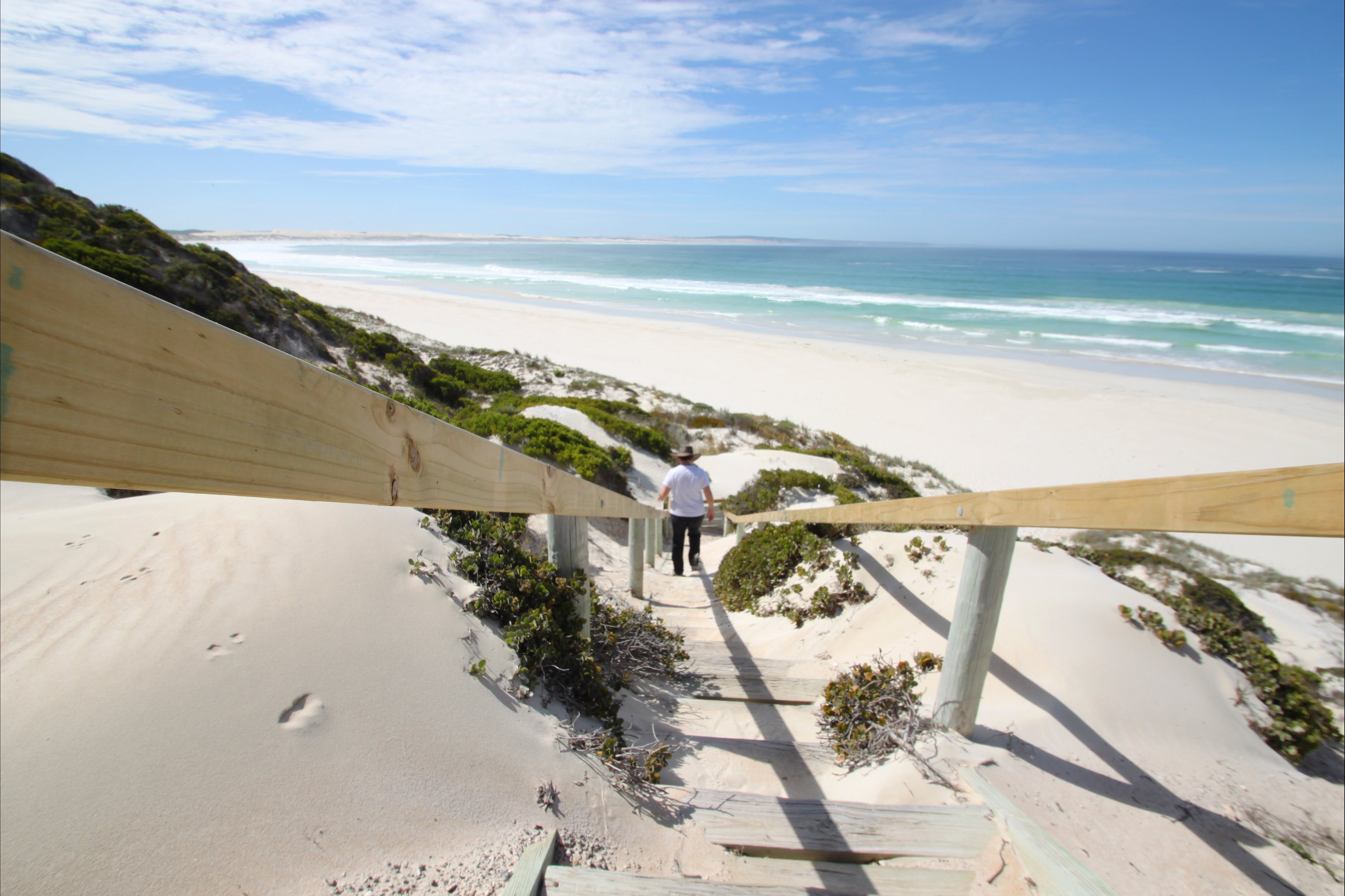 Coffin Bay National Park - Palm Beach Accommodation