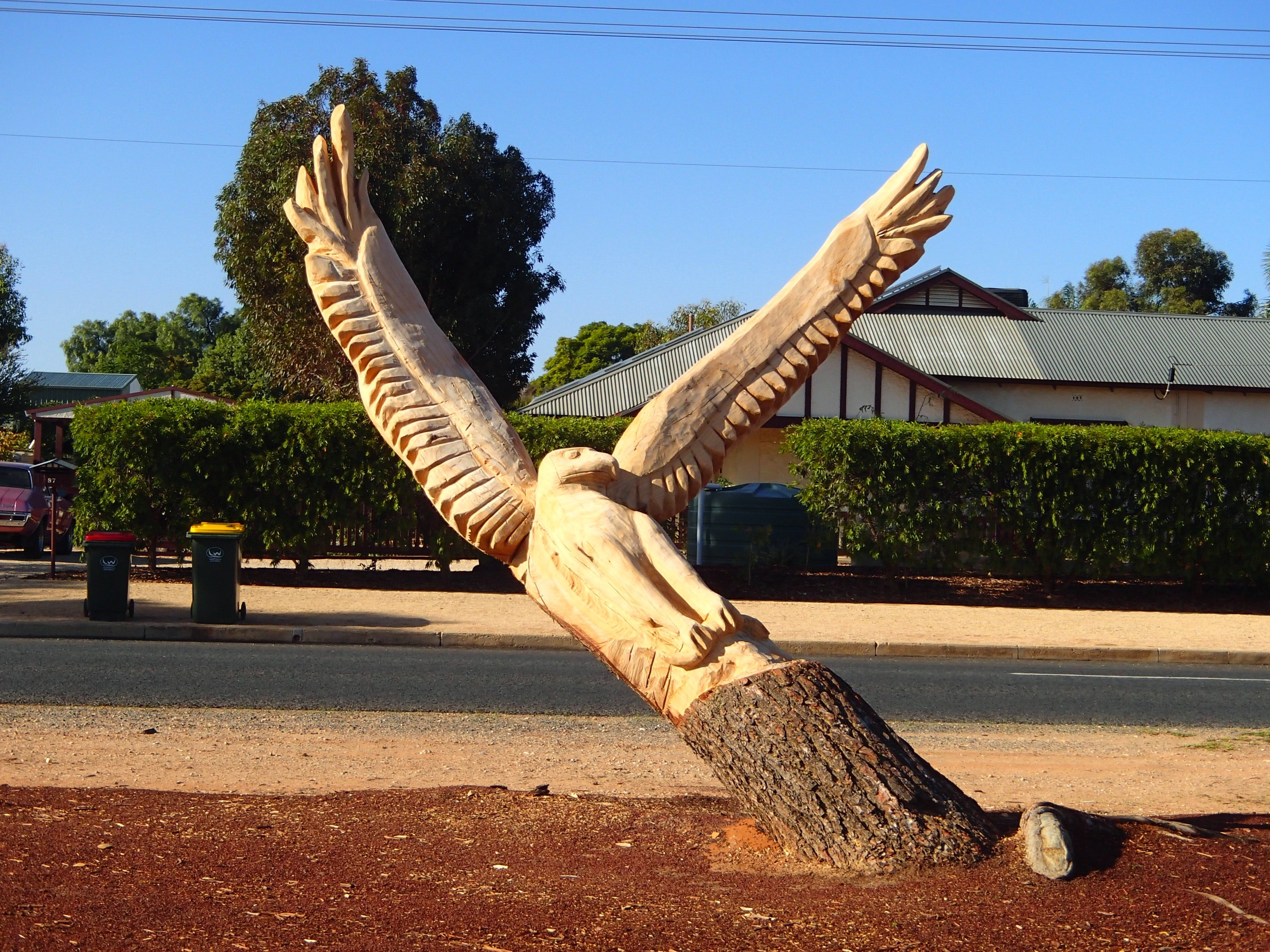 Loxton Tree sculptures - Palm Beach Accommodation