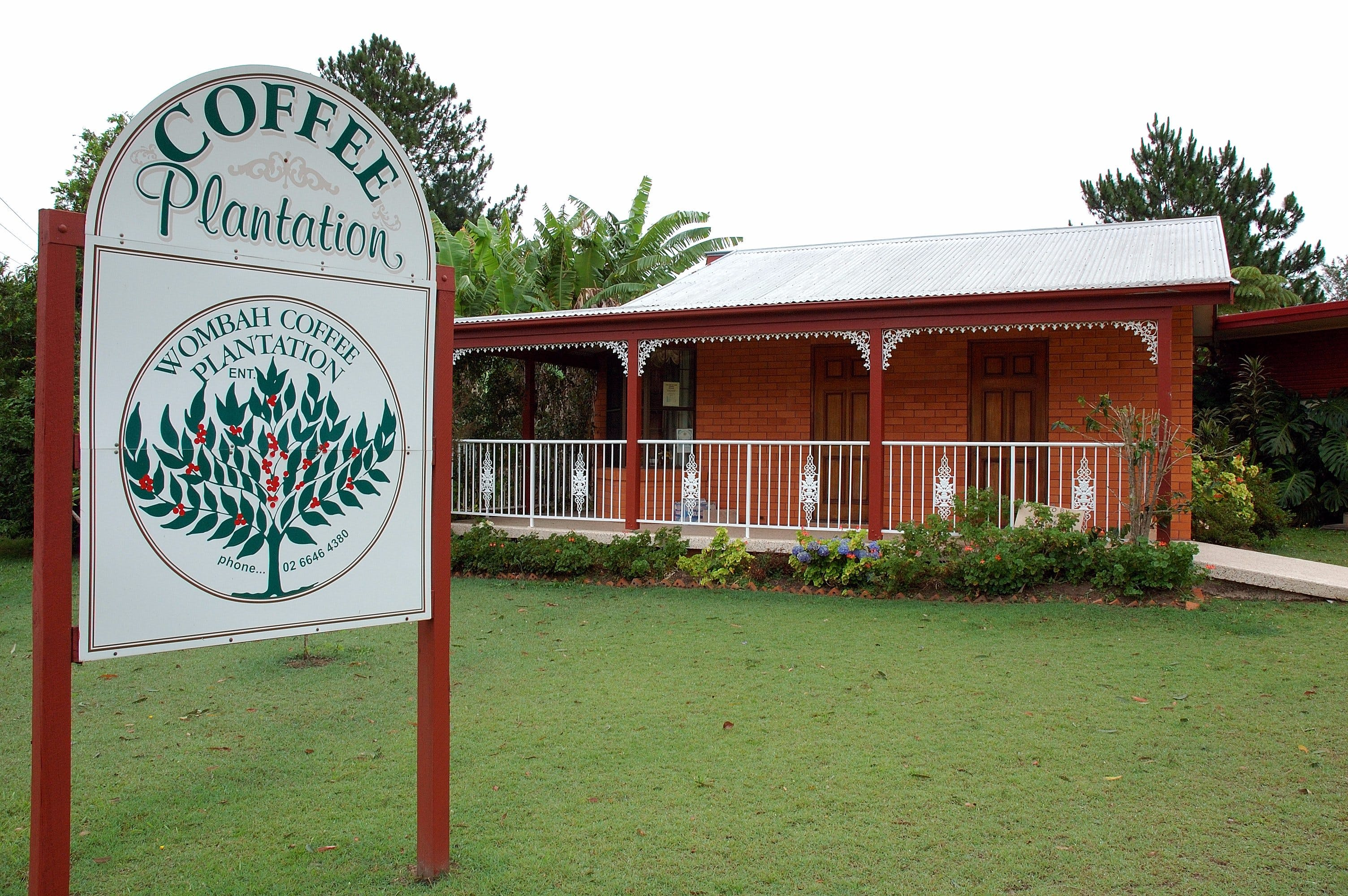 Wombah Coffee Plantation - Palm Beach Accommodation