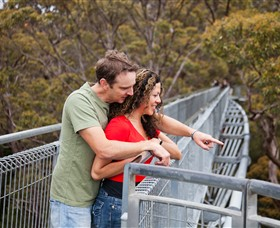Valley of the Giants Tree Top Walk - Palm Beach Accommodation