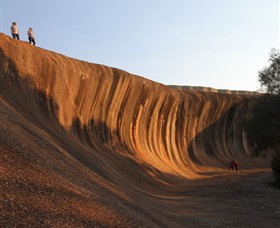 Wave Rock - Palm Beach Accommodation