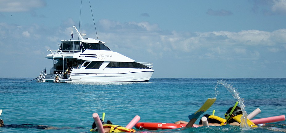 Seastar Cruises - Palm Beach Accommodation