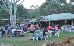 Bush Shack Brewery - Palm Beach Accommodation