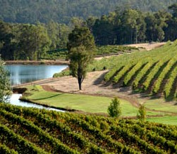 Brookhampton Estate Vineyard - Palm Beach Accommodation