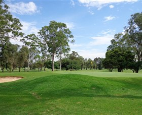 Singleton Golf Club - Palm Beach Accommodation