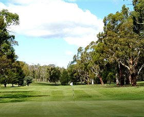 Cooma Golf Club - Palm Beach Accommodation