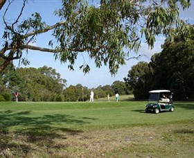 Leongatha Golf Club - Palm Beach Accommodation