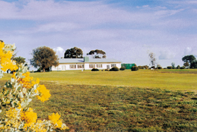 Lucindale Country Club - Palm Beach Accommodation