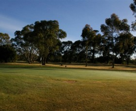 Winchelsea Golf Club - Palm Beach Accommodation