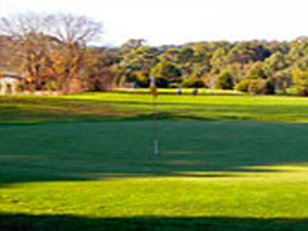 Oakbank Golf Club - Palm Beach Accommodation