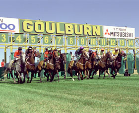 Goulburn and District Racing Club - Palm Beach Accommodation