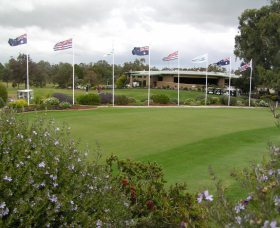 Tocumwal Golf Club - Palm Beach Accommodation
