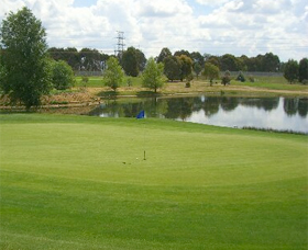 Magpies Belconnen Golf Club - Palm Beach Accommodation