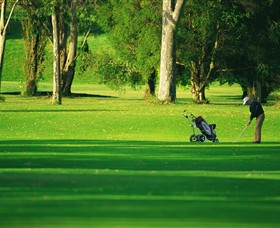 Foster Golf Club - Palm Beach Accommodation