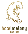 Maleny Hotel - Palm Beach Accommodation