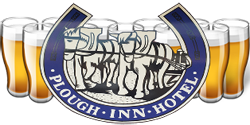 Plough Inn Hotel - Palm Beach Accommodation