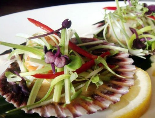 Kaffir Lime Thai Eatery - Palm Beach Accommodation