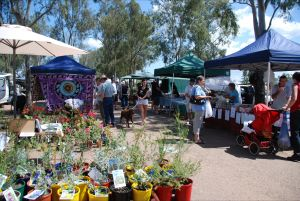 Fernvale Country Markets - Palm Beach Accommodation