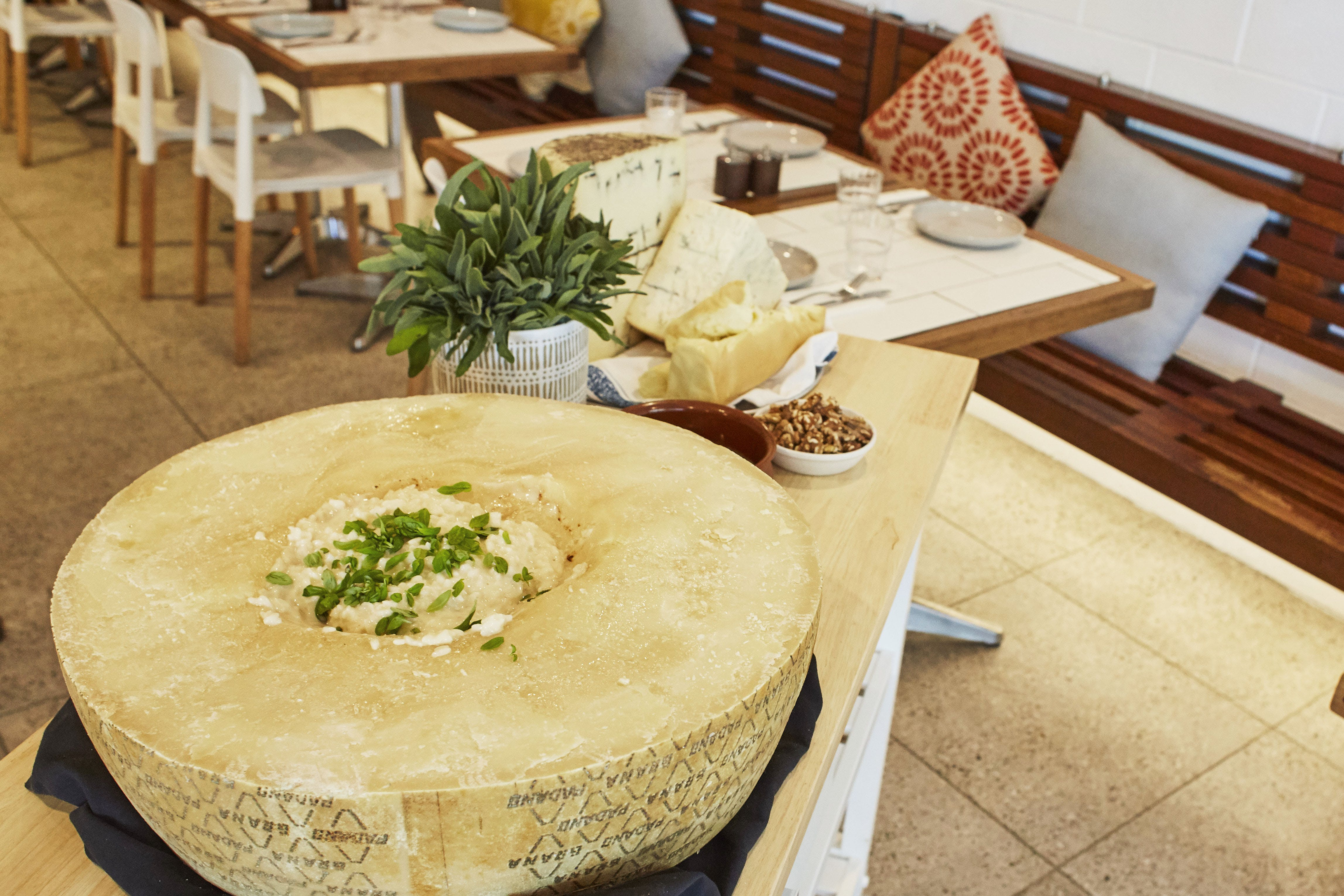 Flaming Cheese Wheel and Wine Experience Broadway - Palm Beach Accommodation