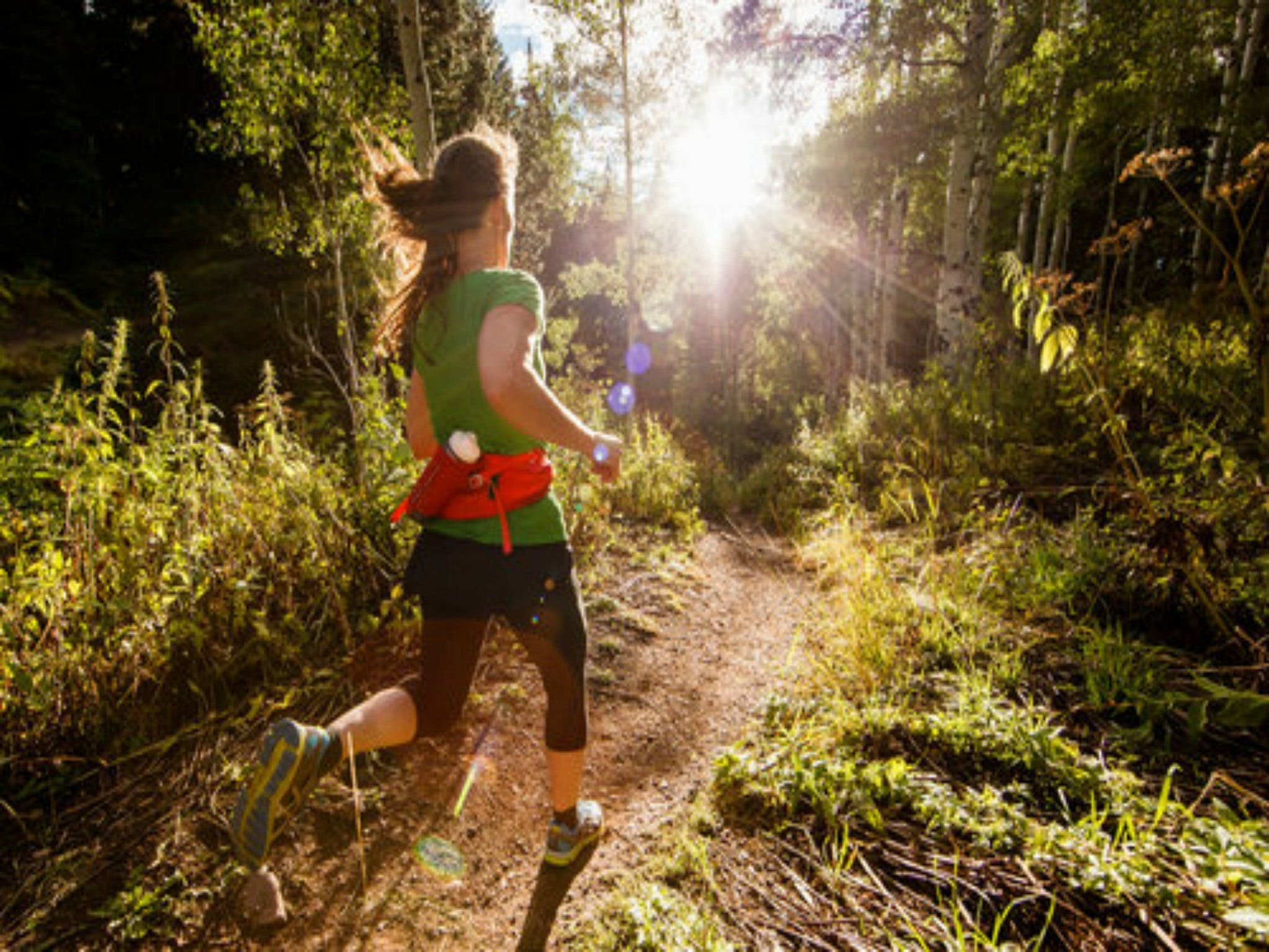 Run Dungog - Palm Beach Accommodation