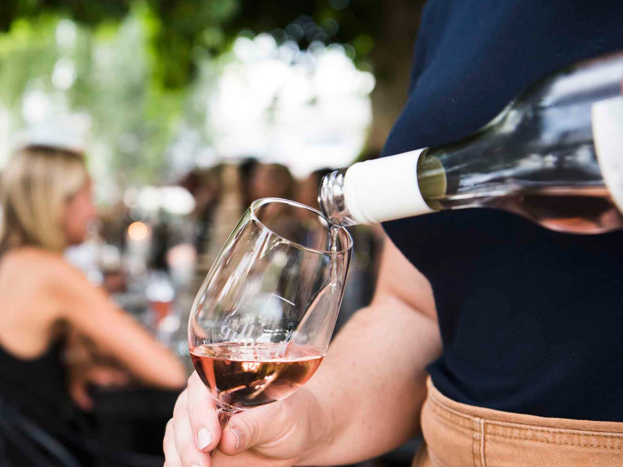 Saturday Wine Masterclass - Palm Beach Accommodation